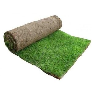rolawn_medallion_turf